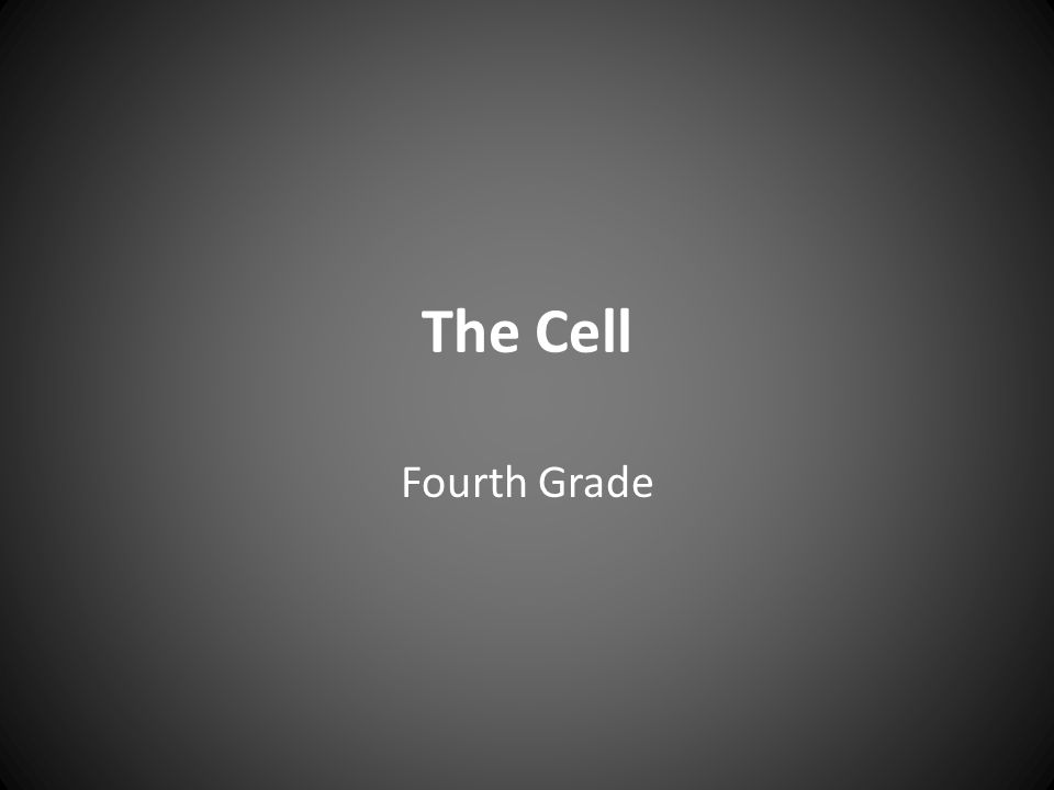 The Cell Fourth Grade