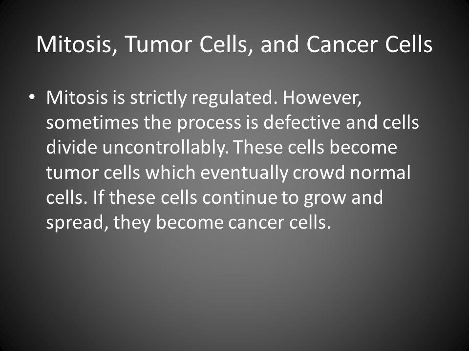 Mitosis, Tumor Cells, and Cancer Cells Mitosis is strictly regulated. However, sometimes the process is defective and cells divide uncontrollably. The