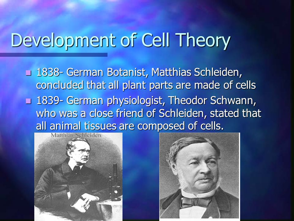Development of Cell Theory 1838- German Botanist, Matthias Schleiden, concluded that all plant parts are made of cells 1838- German Botanist, Matthias