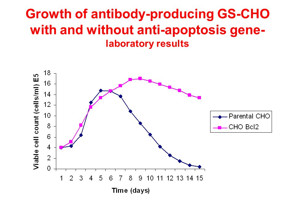 Growth of antibody-producing GS-CHO with and without anti-apoptosis gene- laboratory results