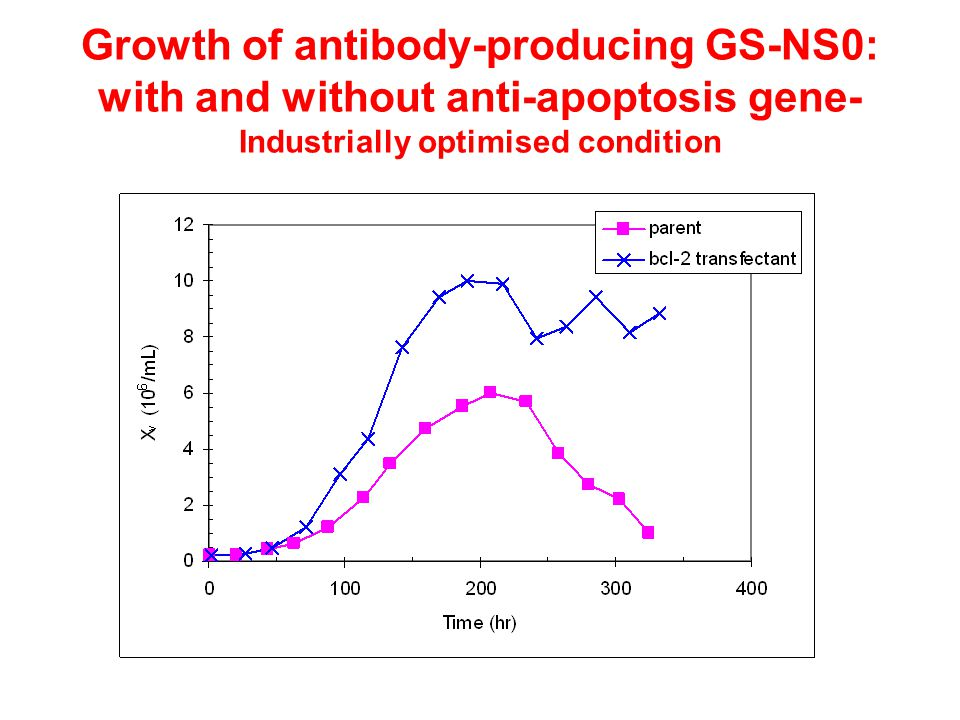 Growth of antibody-producing GS-NS0: with and without anti-apoptosis gene- Industrially optimised condition