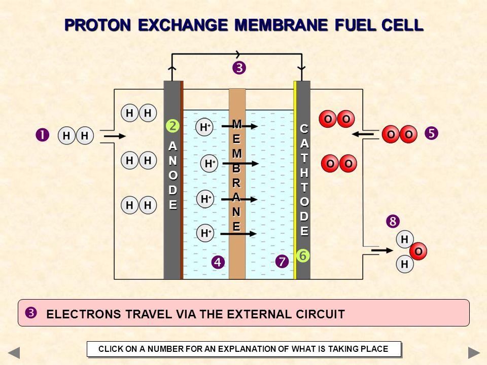  ELECTRONS TRAVEL VIA THE EXTERNAL CIRCUIT PROTON EXCHANGE MEMBRANE FUEL CELL        ANODEANODEANODEANODE CATHTODECATHTODECATHTODECATHTODE MEM