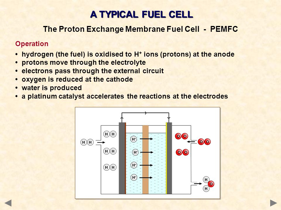 A TYPICAL FUEL CELL The Proton Exchange Membrane Fuel Cell - PEMFC Operation hydrogen (the fuel) is oxidised to H + ions (protons) at the anode proton