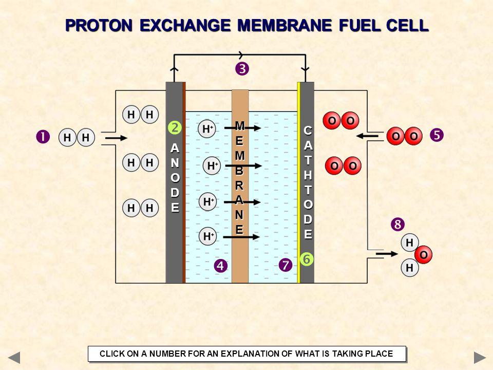 PROTON EXCHANGE MEMBRANE FUEL CELL        ANODEANODEANODEANODE CATHTODECATHTODECATHTODECATHTODE MEMBRANEMEMBRANEMEMBRANEMEMBRANE  CLICK ON A N