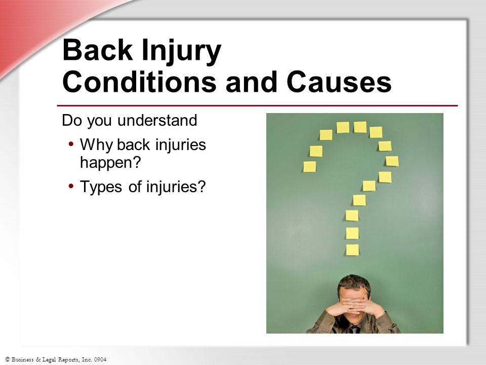© Business & Legal Reports, Inc. 0904 Back Injury Conditions and Causes Do you understand Why back injuries happen? Types of injuries?