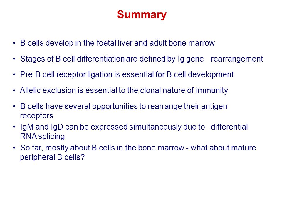 B cells develop in the foetal liver and adult bone marrow Stages of B cell differentiation are defined by Ig gene rearrangement Pre-B cell receptor li