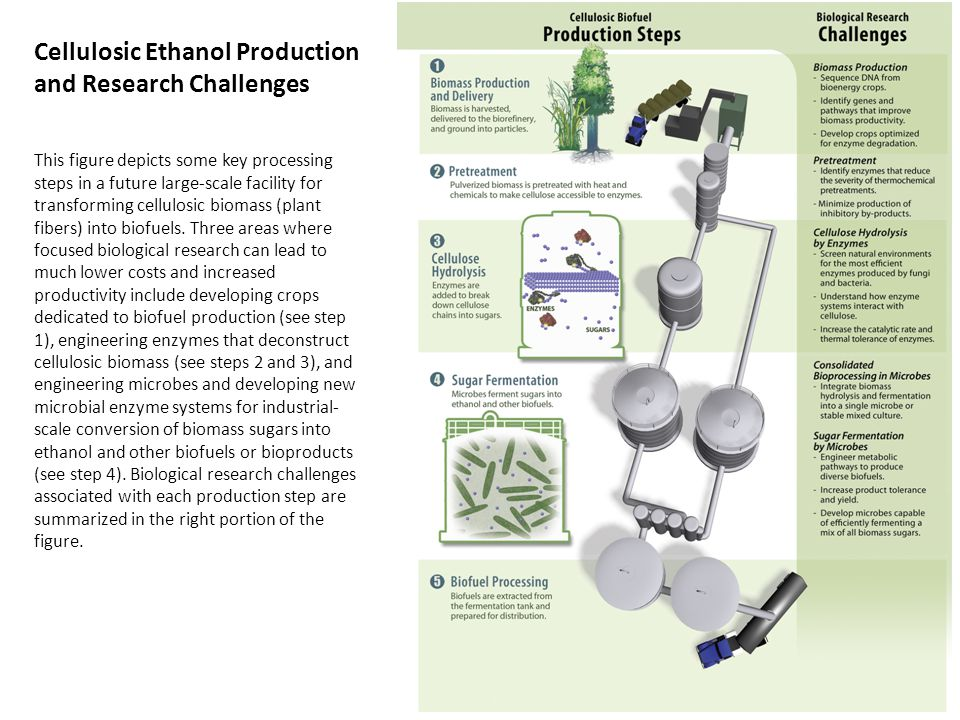 Cellulosic Ethanol Production and Research Challenges This figure depicts some key processing steps in a future large-scale facility for transforming