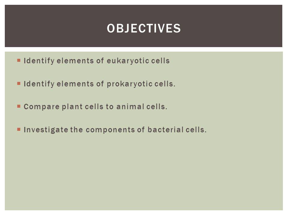  Identify elements of eukaryotic cells  Identify elements of prokaryotic cells.