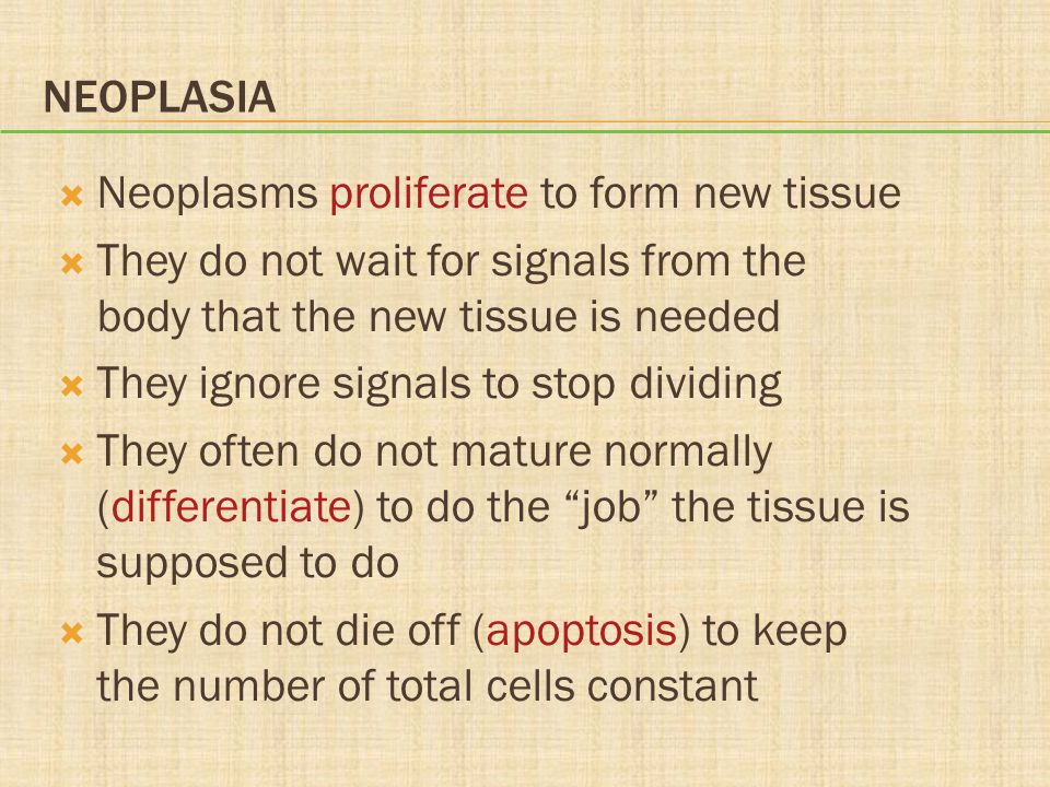 NEOPLASIA  Neoplasms proliferate to form new tissue  They do not wait for signals from the body that the new tissue is needed  They ignore signals