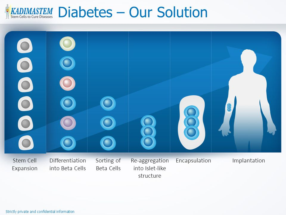 Strictly private and confidential information Diabetes – Our Solution Stem Cell Expansion Differentiation into Beta Cells Sorting of Beta Cells Re-aggregation into Islet-like structure EncapsulationImplantation