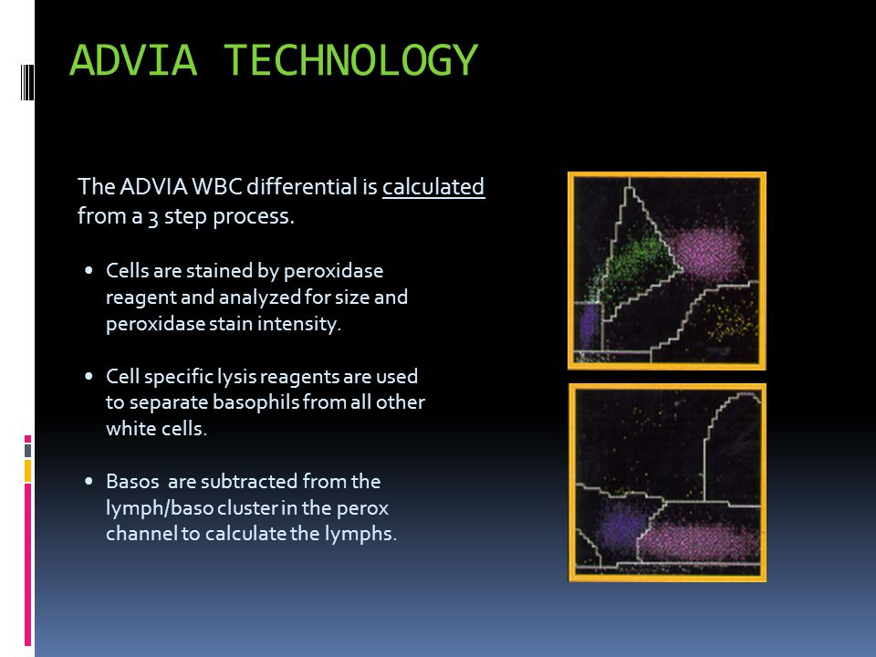 The ADVIA WBC differential is calculated from a 3 step process. Cells are stained by peroxidase reagent and analyzed for size and peroxidase stain int