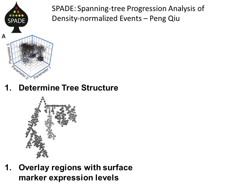 SPADE: Spanning-tree Progression Analysis of Density-normalized Events – Peng Qiu 1.Determine Tree Structure 1.Overlay regions with surface marker expression levels