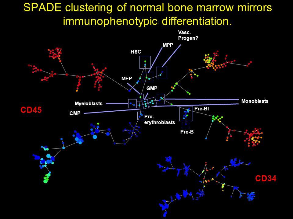 HSC Vasc. Progen? MPP Pre-BI Pro-B Pro- erythroblasts Monoblasts Myeloblasts CMP MEP GMP SPADE clustering of normal bone marrow mirrors immunophenotyp