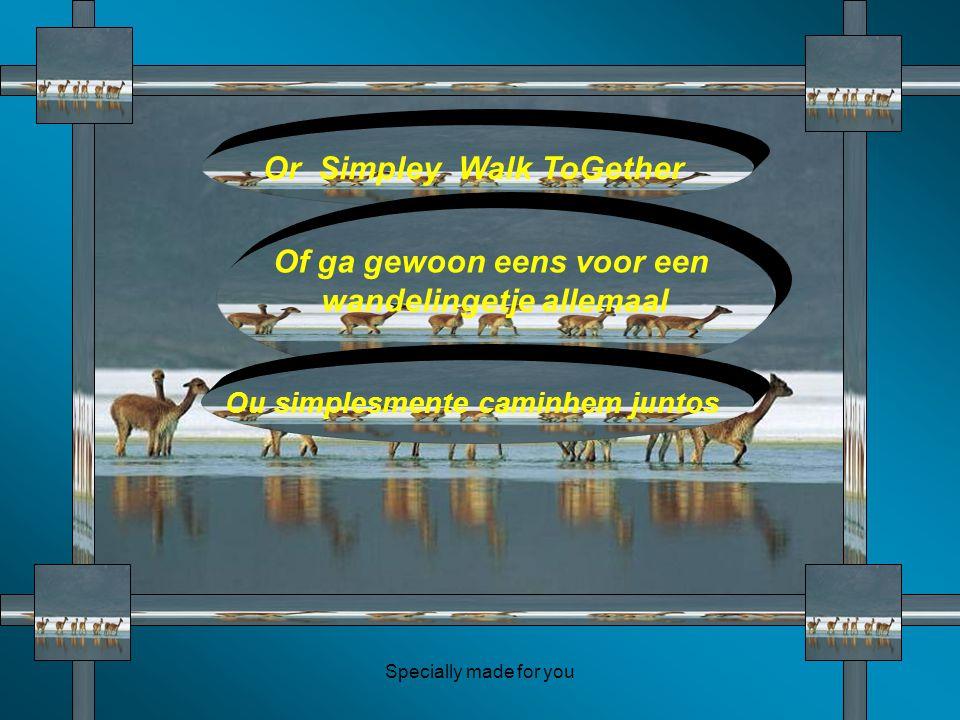 Specially made for you Or Simpley Walk ToGether Of ga gewoon eens voor een wandelingetje allemaal Ou simplesmente caminhem juntos