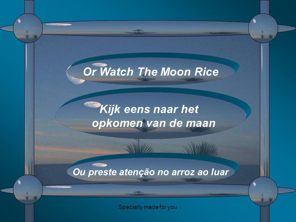 Specially made for you Or Watch The Moon Rice Kijk eens naar het opkomen van de maan Ou preste atenção no arroz ao luar