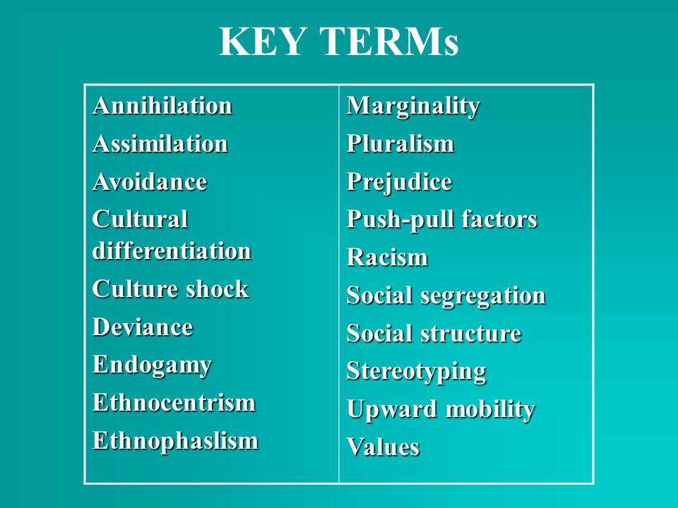 KEY TERMs AnnihilationAssimilationAvoidance Cultural differentiation Culture shock DevianceEndogamyEthnocentrismEthnophaslismMarginalityPluralismPreju