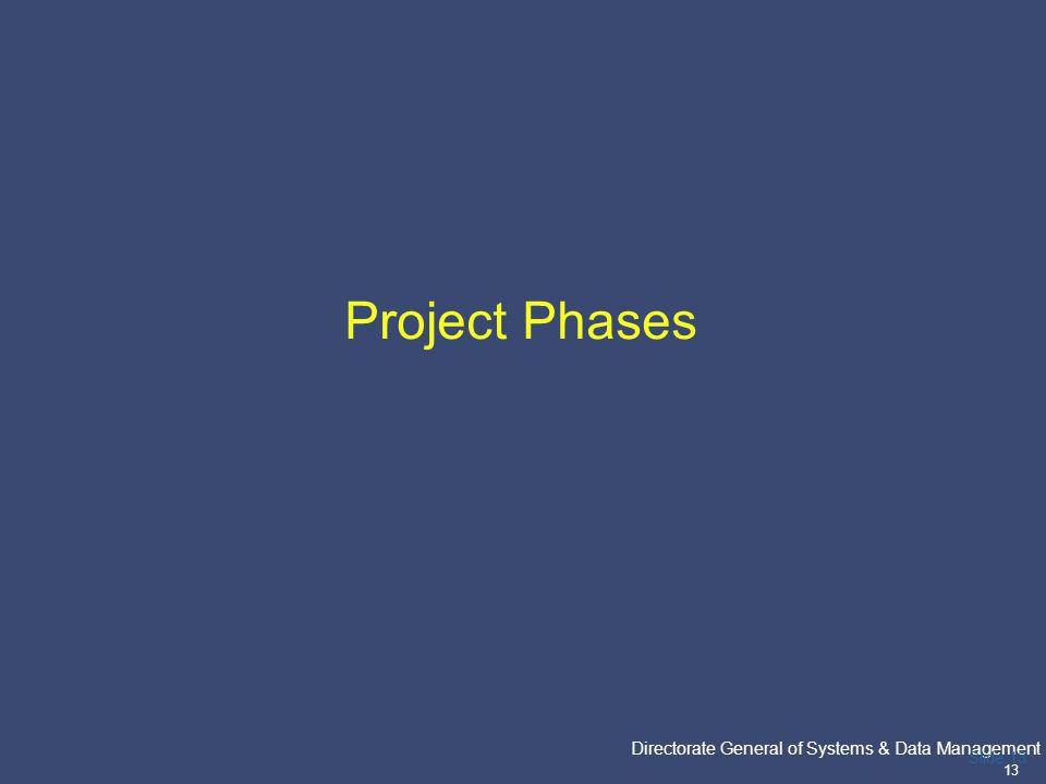 PricewaterhouseCoopers Directorate General of Systems & Data Management 13 Slide 13 Project Phases
