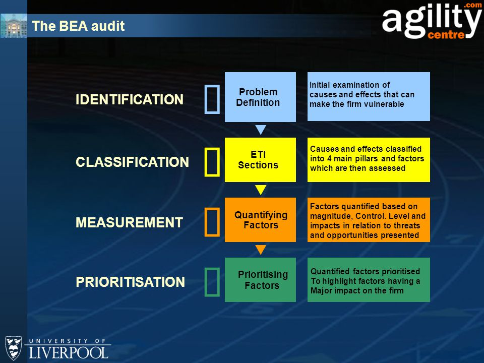 The BEA audit