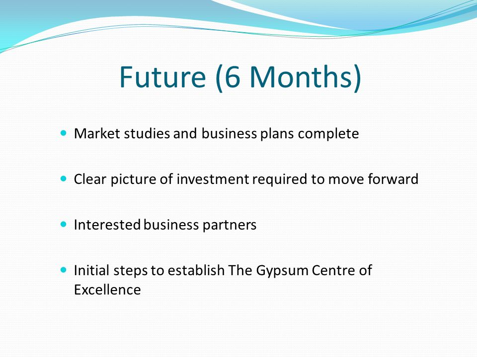 Future (6 Months) Market studies and business plans complete Clear picture of investment required to move forward Interested business partners Initial
