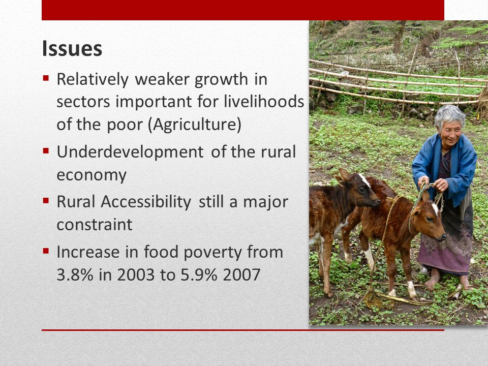 Issues  Relatively weaker growth in sectors important for livelihoods of the poor (Agriculture)  Underdevelopment of the rural economy  Rural Accessibility still a major constraint  Increase in food poverty from 3.8% in 2003 to 5.9% 2007