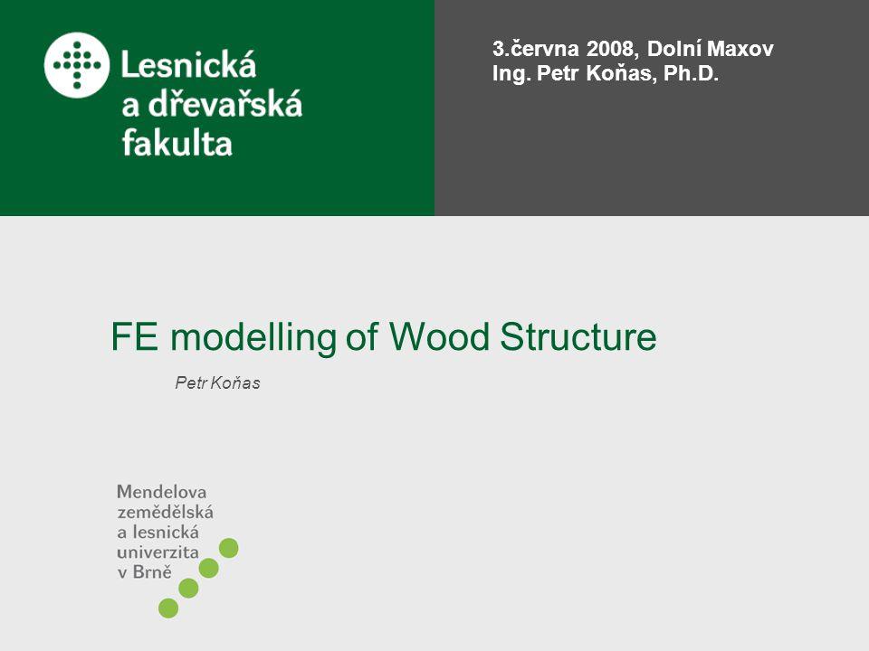 Programy a algoritmy numerické matematiky 14 strana 2/33 Guidelines Why to model wood structure.
