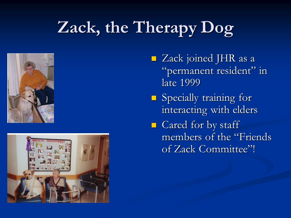 Zack, the Therapy Dog Zack joined JHR as a permanent resident in late 1999 Specially training for interacting with elders Cared for by staff members of the Friends of Zack Committee !