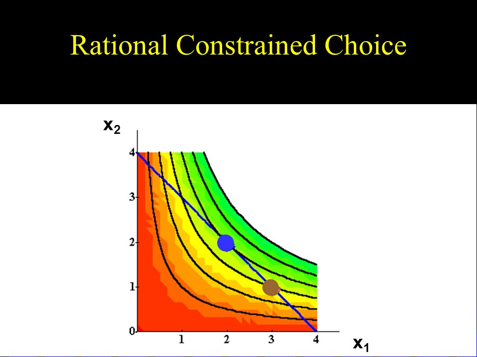 Rational Constrained Choice x1x1 x2x2