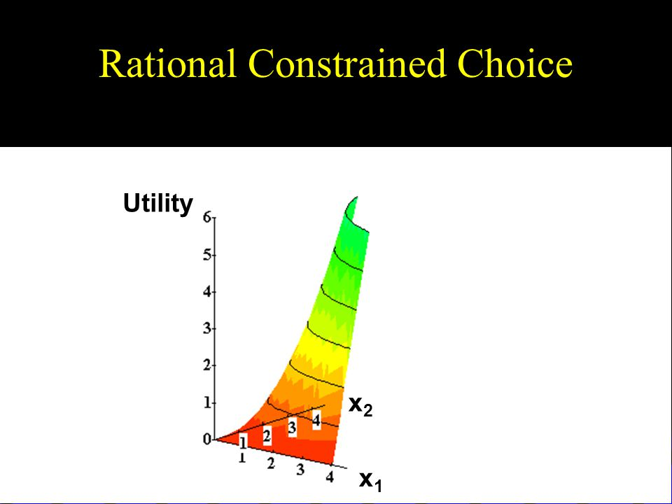Rational Constrained Choice x1x1 x2x2 Utility