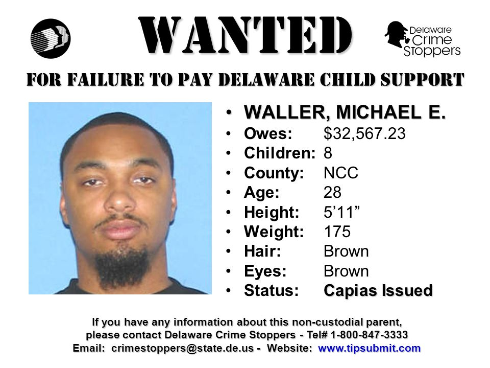 WANTED FOR FAILURE TO PAY DELAWARE CHILD SUPPORT ADAMS, IRAADAMS, IRA Owes:$32,715.26 Children:2 County:NCC Age: 40 Height: 5'8 Weight:190 Hair: Black Eyes:Brown Capias IssuedStatus:Capias Issued If you have any information about this non-custodial parent, please contact Delaware Crime Stoppers - Tel# 1-800-847-3333 Email: crimestoppers@state.de.us - Website: www.tipsubmit.com