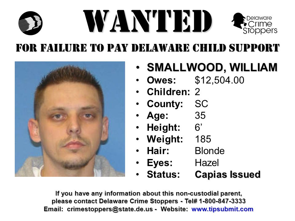 WANTED FOR FAILURE TO PAY DELAWARE CHILD SUPPORT WEIR, CASSIANOWEIR, CASSIANO Owes:$12,582.80 Children:1 County:NCC Age: 32 Height: 6'1 Weight:160 Hair: Black Eyes:Brown Capias IssuedStatus:Capias Issued If you have any information about this non-custodial parent, please contact Delaware Crime Stoppers - Tel# 1-800-847-3333 Email: crimestoppers@state.de.us - Website: www.tipsubmit.com
