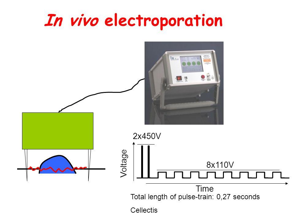 In vivo electroporation Total length of pulse-train: 0,27 seconds Cellectis Time Voltage 2x450V 8x110V