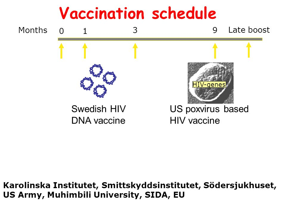 01 Months 39 Swedish HIV DNA vaccine US poxvirus based HIV vaccine HIV-genes Vaccination schedule Karolinska Institutet, Smittskyddsinstitutet, Södersjukhuset, US Army, Muhimbili University, SIDA, EU Late boost