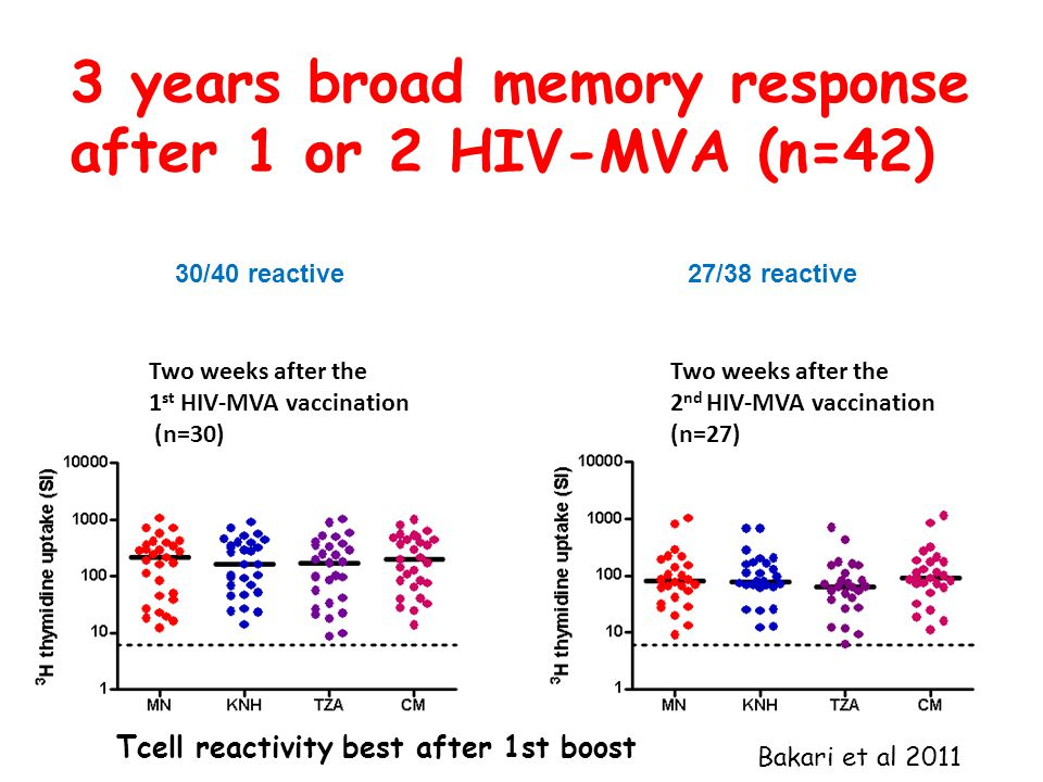 3 years broad memory response after 1 or 2 HIV-MVA (n=42) Two weeks after the 1 st HIV-MVA vaccination (n=30) Two weeks after the 2 nd HIV-MVA vaccination (n=27) 30/40 reactive27/38 reactive Tcell reactivity best after 1st boost Bakari et al 2011