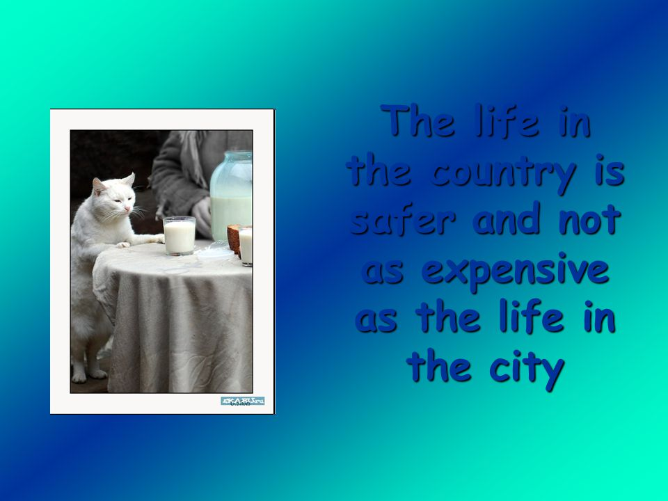 The life in the country is safer and not as expensive as the life in the city