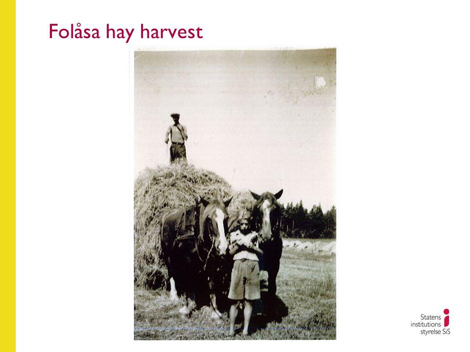 Folåsa hay harvest