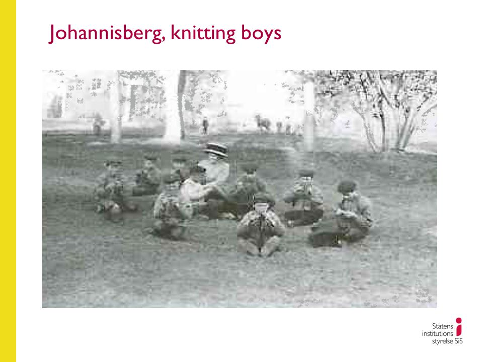 Johannisberg, knitting boys