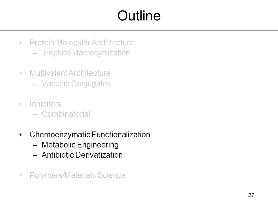 27 Outline Protein Molecular Architecture – Peptide Macrocyclization Multivalent Architecture –Vaccine Conjugates Inhibitors –Combinatorial Chemoenzym