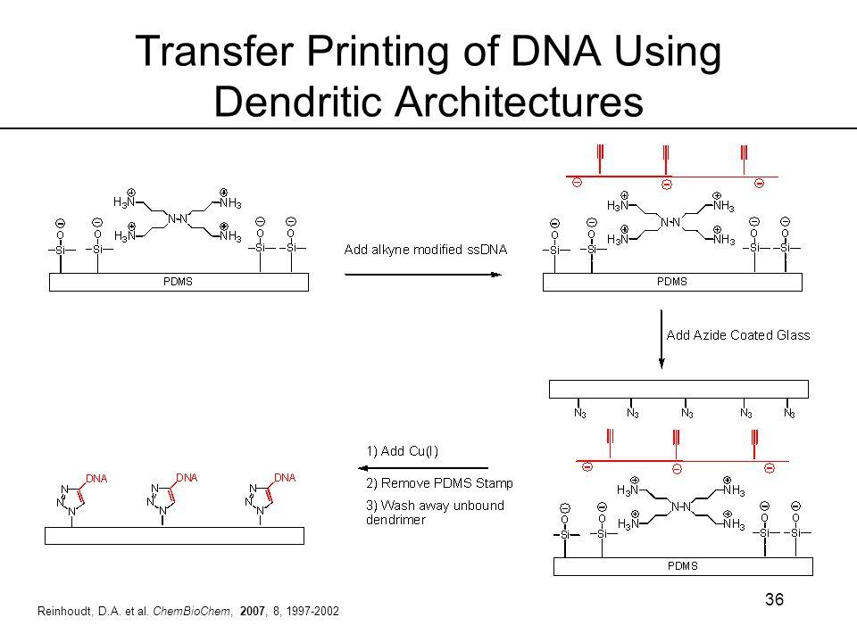 36 Transfer Printing of DNA Using Dendritic Architectures Reinhoudt, D.A. et al. ChemBioChem, 2007, 8, 1997-2002