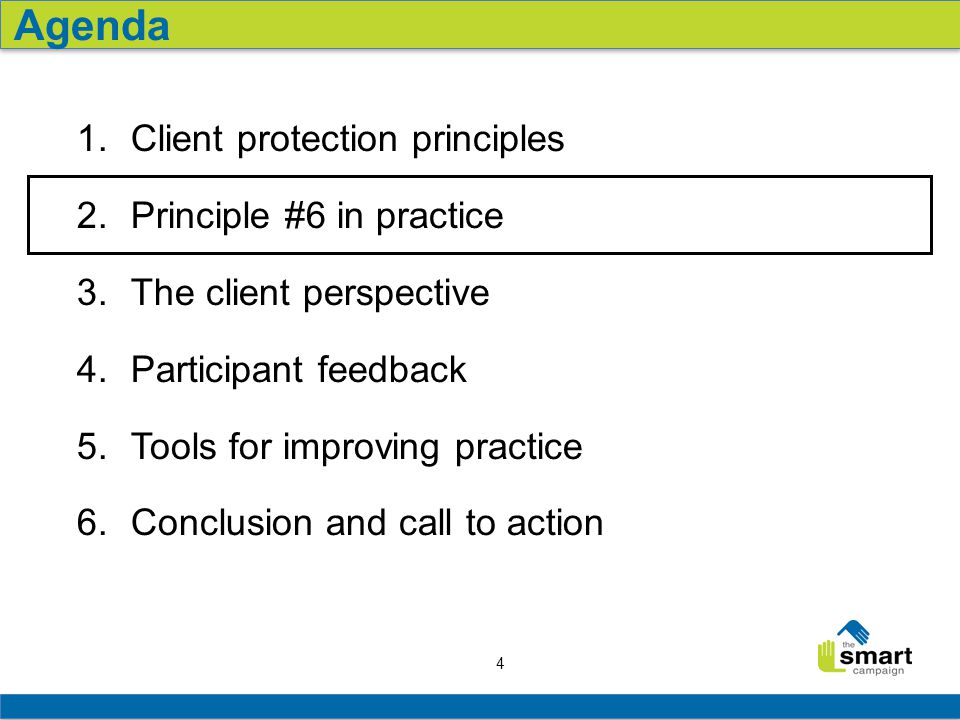 4 1.Client protection principles 2.Principle #6 in practice 3.The client perspective 4.Participant feedback 5.Tools for improving practice 6.Conclusio