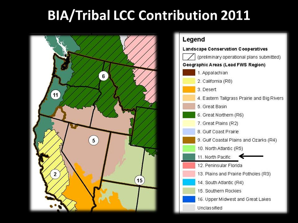 BIA/Tribal LCC Contribution 2011