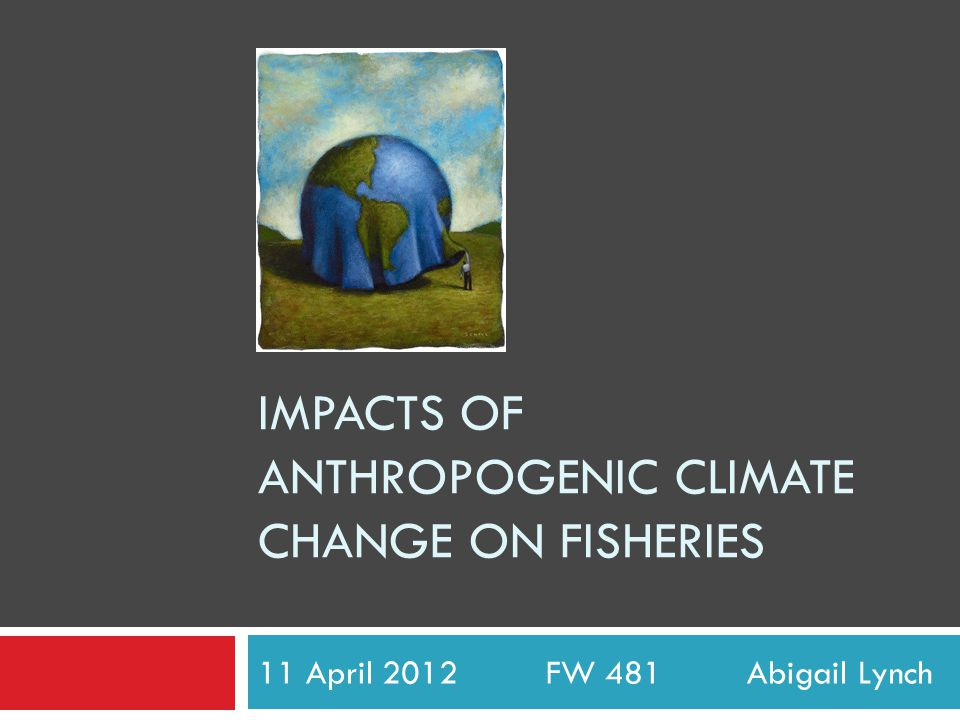 IMPACTS OF ANTHROPOGENIC CLIMATE CHANGE ON FISHERIES 11 April 2012 FW 481 Abigail Lynch
