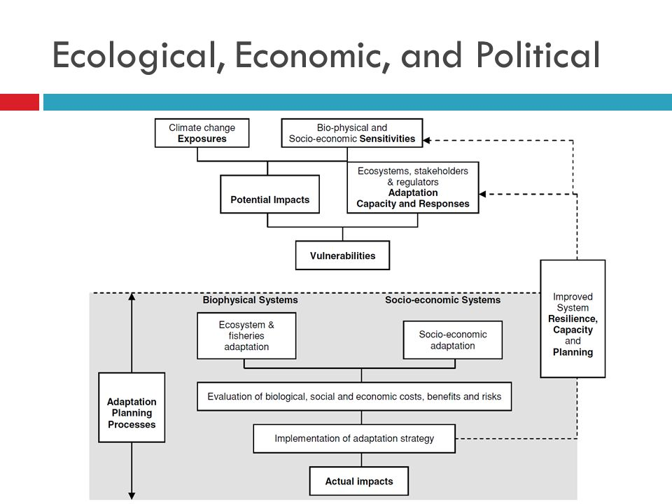 Ecological, Economic, and Political