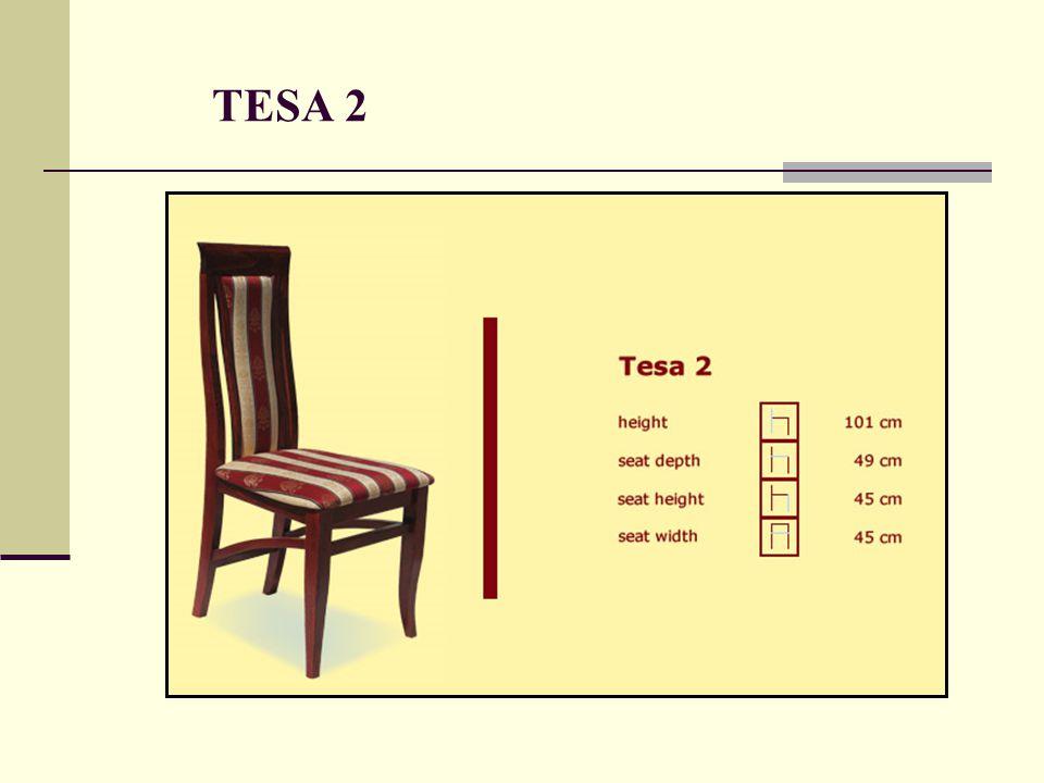 TESA 2
