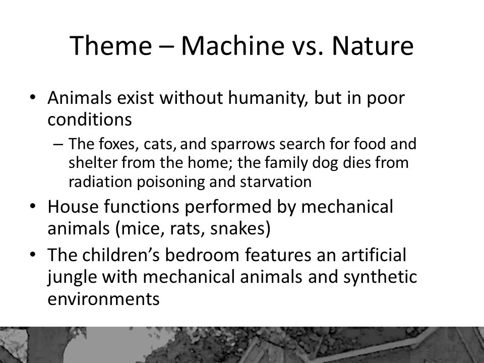 Theme – Machine vs. Nature Animals exist without humanity, but in poor conditions – The foxes, cats, and sparrows search for food and shelter from the