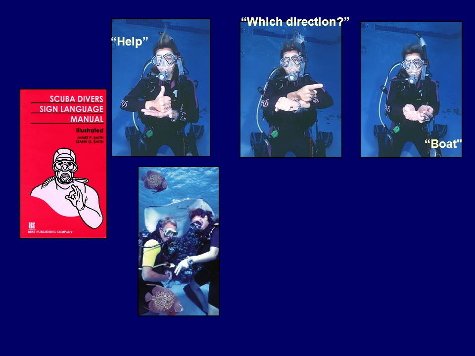 Special Need Group: Divers