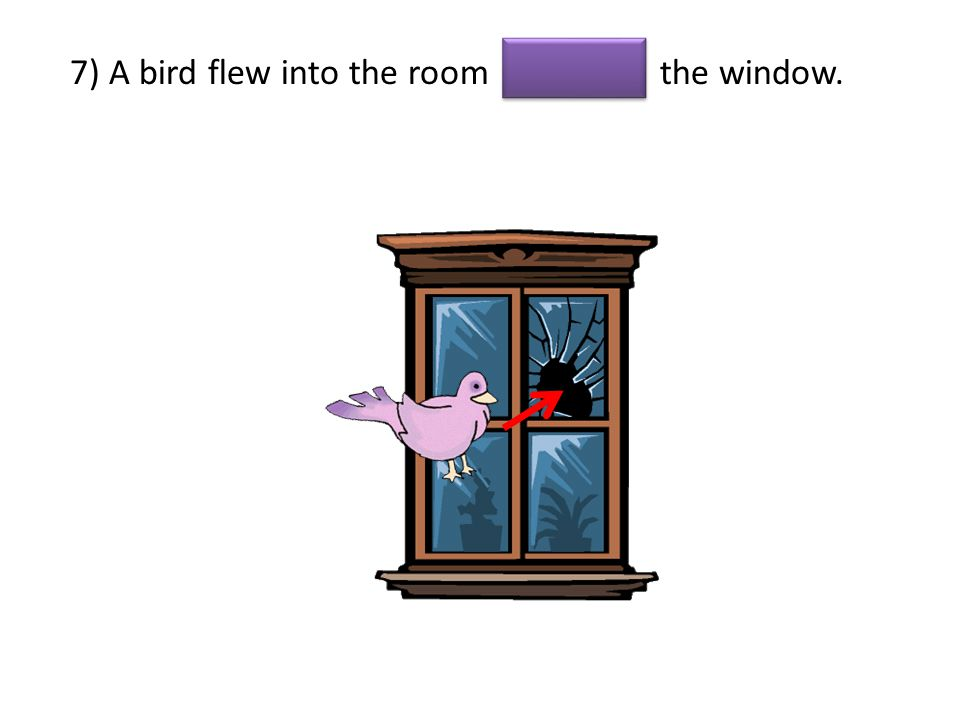 7) A bird flew into the room the window.