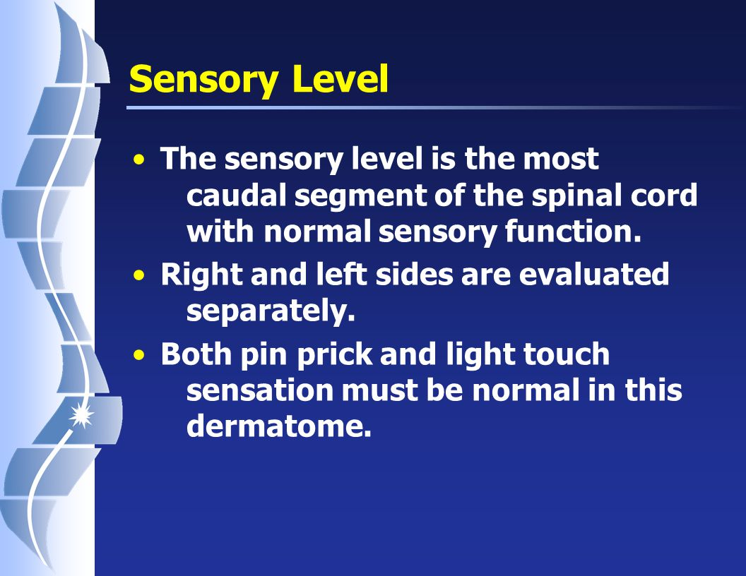 Motor Level The motor level on each side is the most caudal segment of the spinal cord with normal motor function.