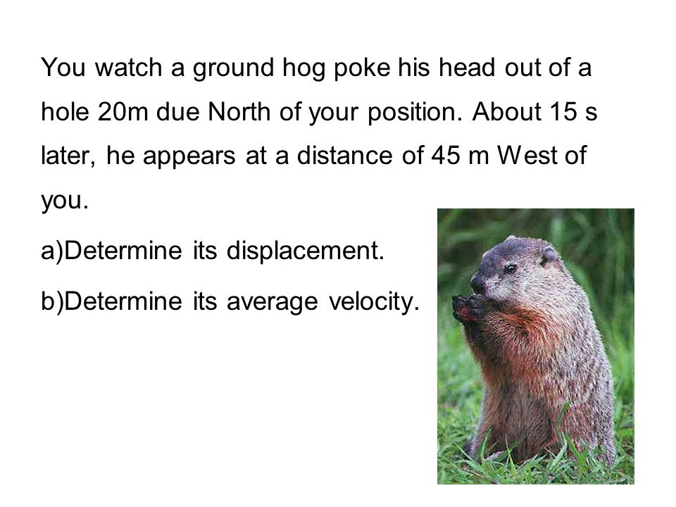 You watch a ground hog poke his head out of a hole 20m due North of your position. About 15 s later, he appears at a distance of 45 m West of you. a)D