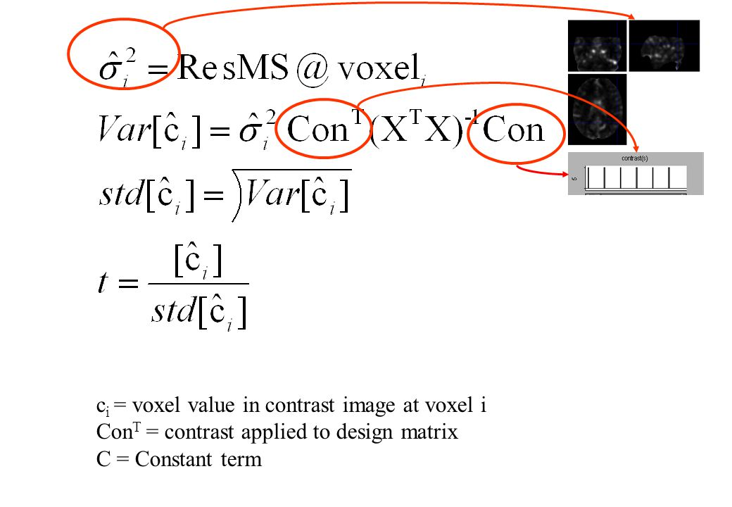 c i = voxel value in contrast image at voxel i Con T = contrast applied to design matrix C = Constant term