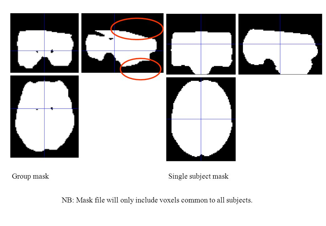 NB: Mask file will only include voxels common to all subjects. Group maskSingle subject mask